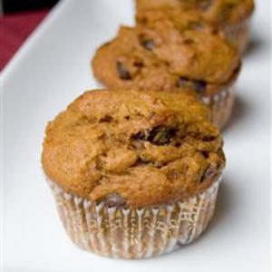 Receita de Muffins de abóbora com gotas de chocolate