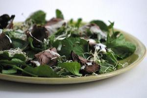 Receita de Salada de Agrião com Rosbife e Raiz Forte