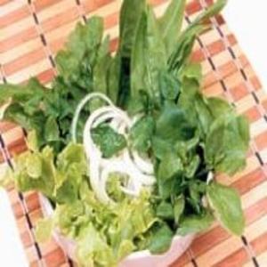 Receita de Salada Verde com Hortelã