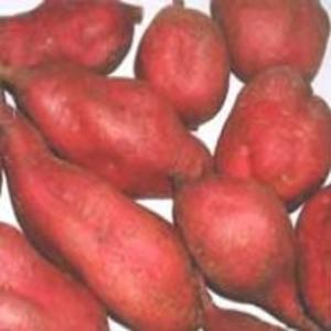 Receita de Batata-doce ao Aroma de Açafrão