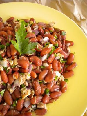 Receita de Salada de atum, feijão e salsa