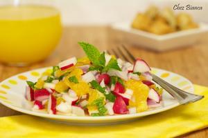 Receita de Salada de laranja com rabanete e hortelã